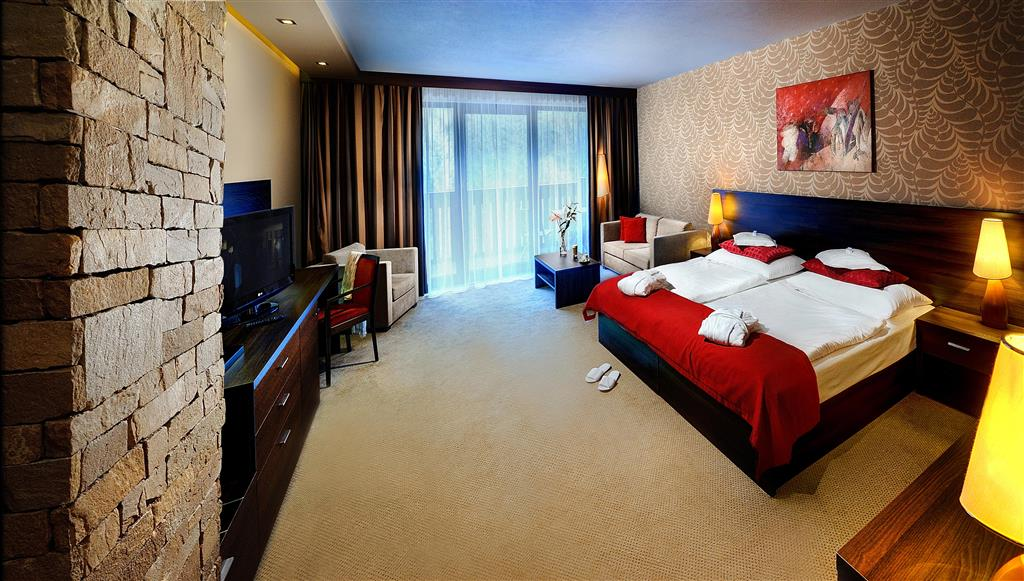 http://data.turancar.sk/t2/Hotel/2329/24658.jpeg