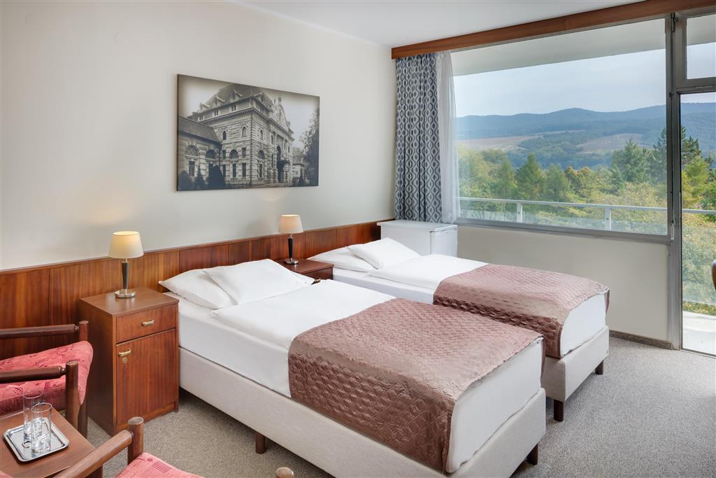 http://data.turancar.sk/t2/Hotel/2387/25536.jpeg